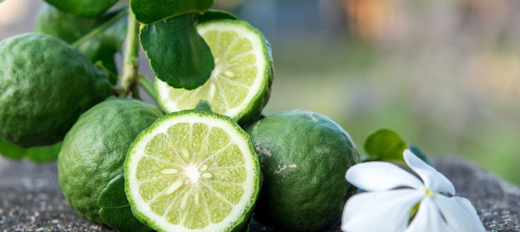 Citrus Bergamot For Healthy Cholesterol Dr Sinatra